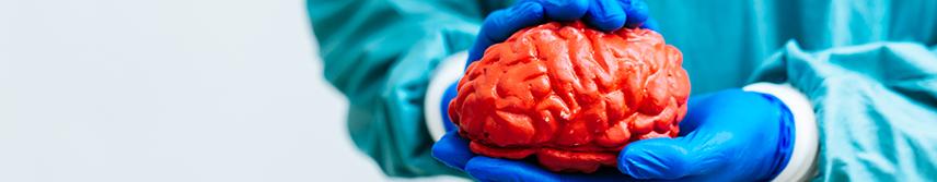 Неврология - вътрешен банер