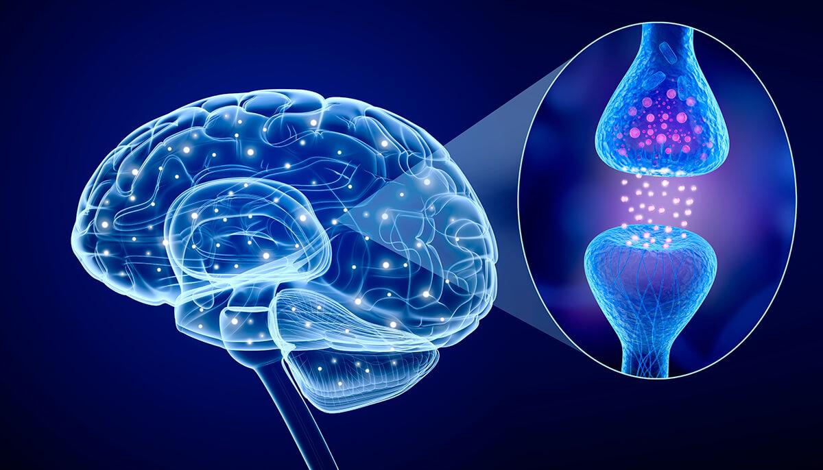 МС – знаем ли достатъчно за множествената склероза