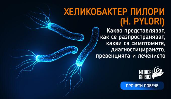 Хеликобактер пилори - H. pylori - превю